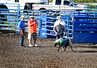 Overbook Rodeo