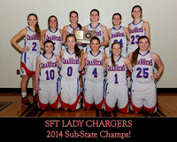 SFT Sub-State