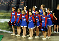KSHSAA CHEER COMPETITION 2017